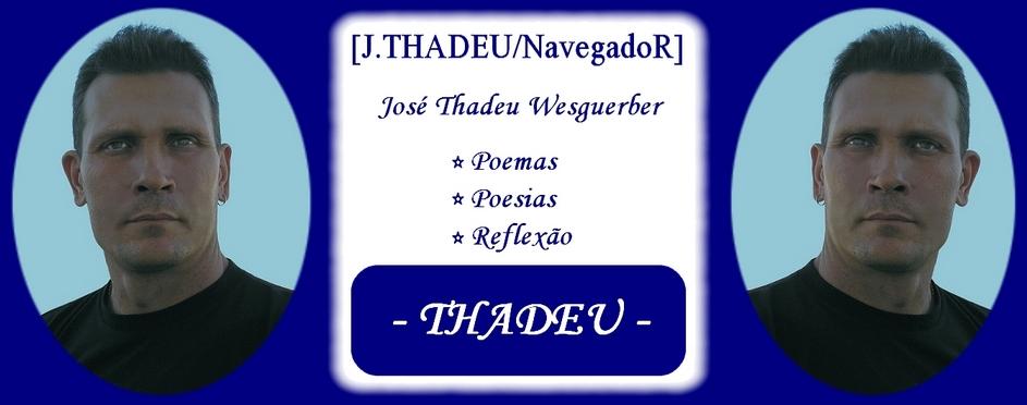 THADEU . NavegadoR