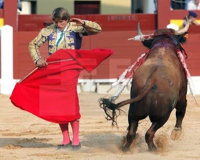 EL CORDOBES OVIEDO TOROS EFE