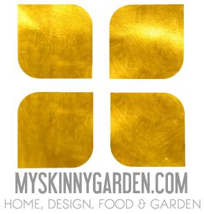 My Skinny Garden
