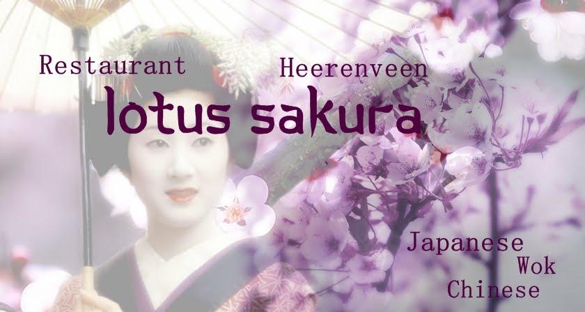 Lotus Sakura