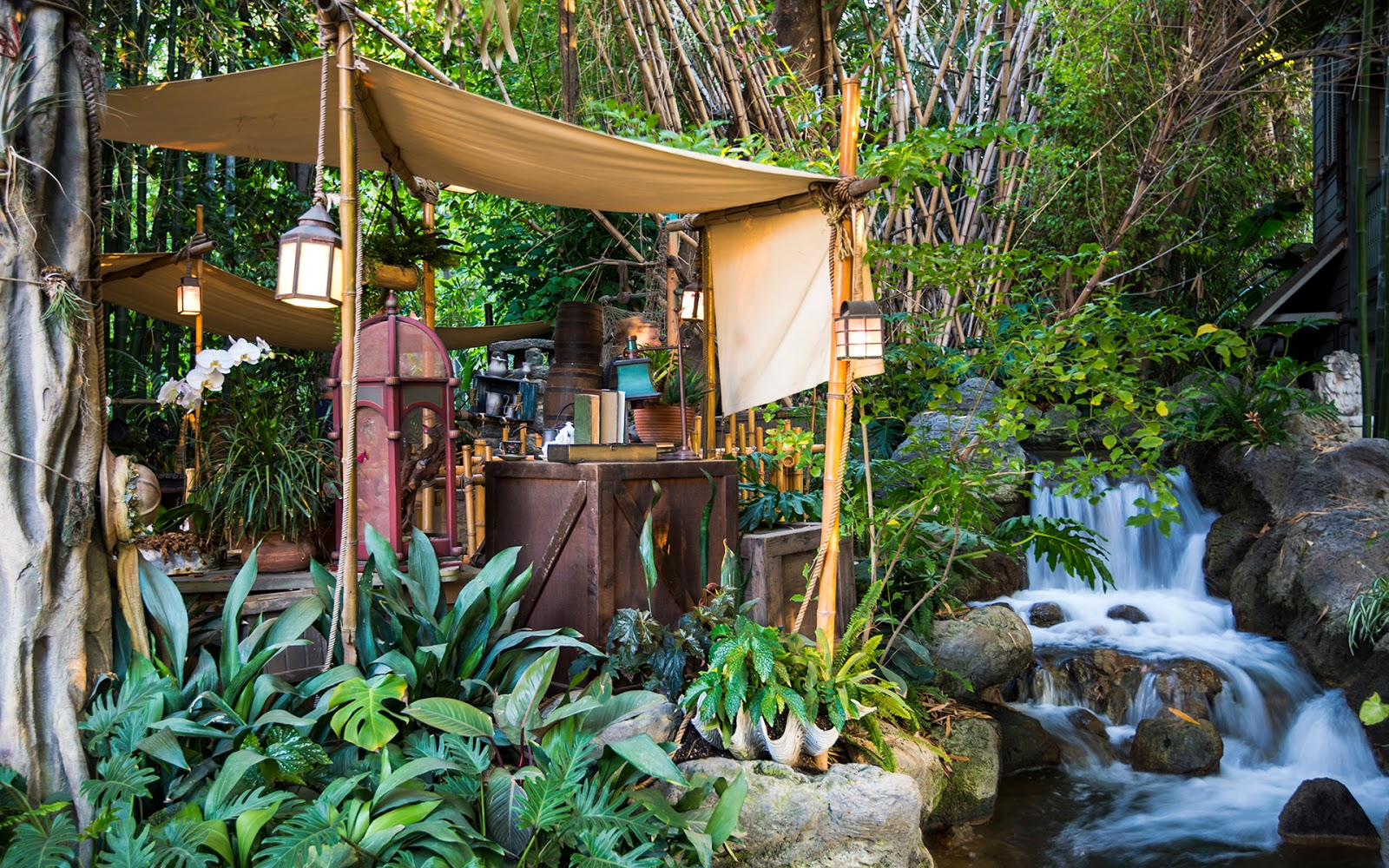 jungle camping -venue: the jungle farm, aswali, bordi for booking, please contact the below mentioned contact numbers  jungle camp on fb jungle camp on fb nature & adventure .