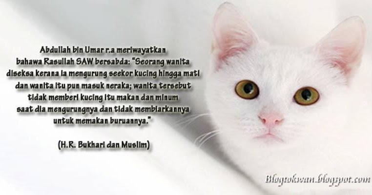 Beautiful Cara Menguburkan Kucing Secara Islam Ideas - Design ...