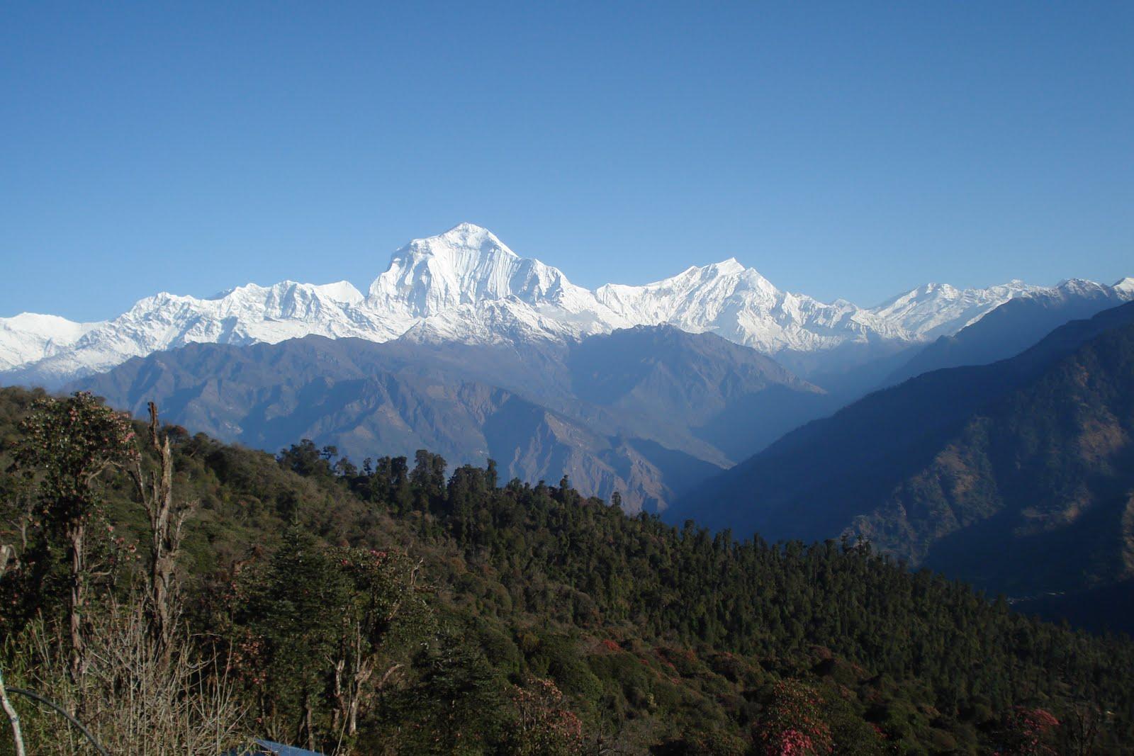 trekking nepal a travelers guide 8th ed