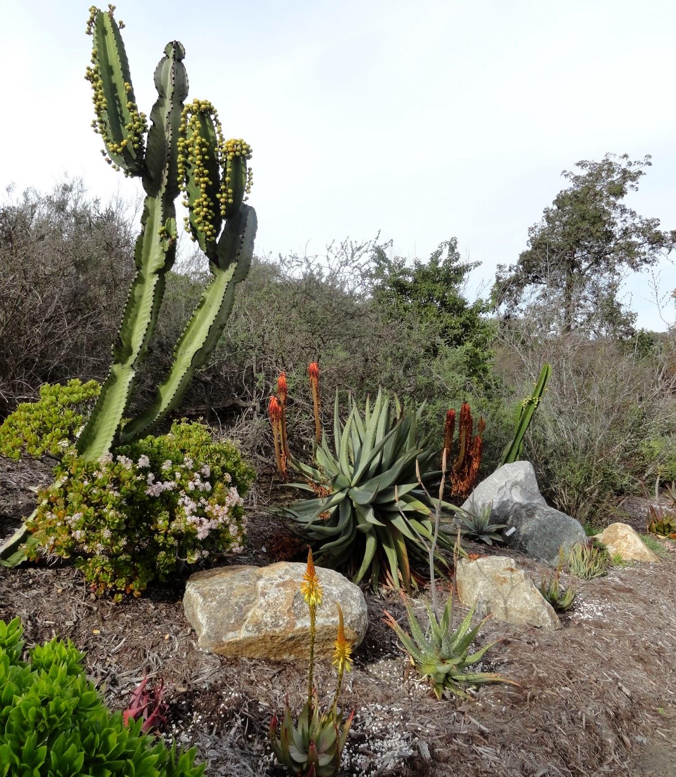 danger garden san go botanic garden part 1