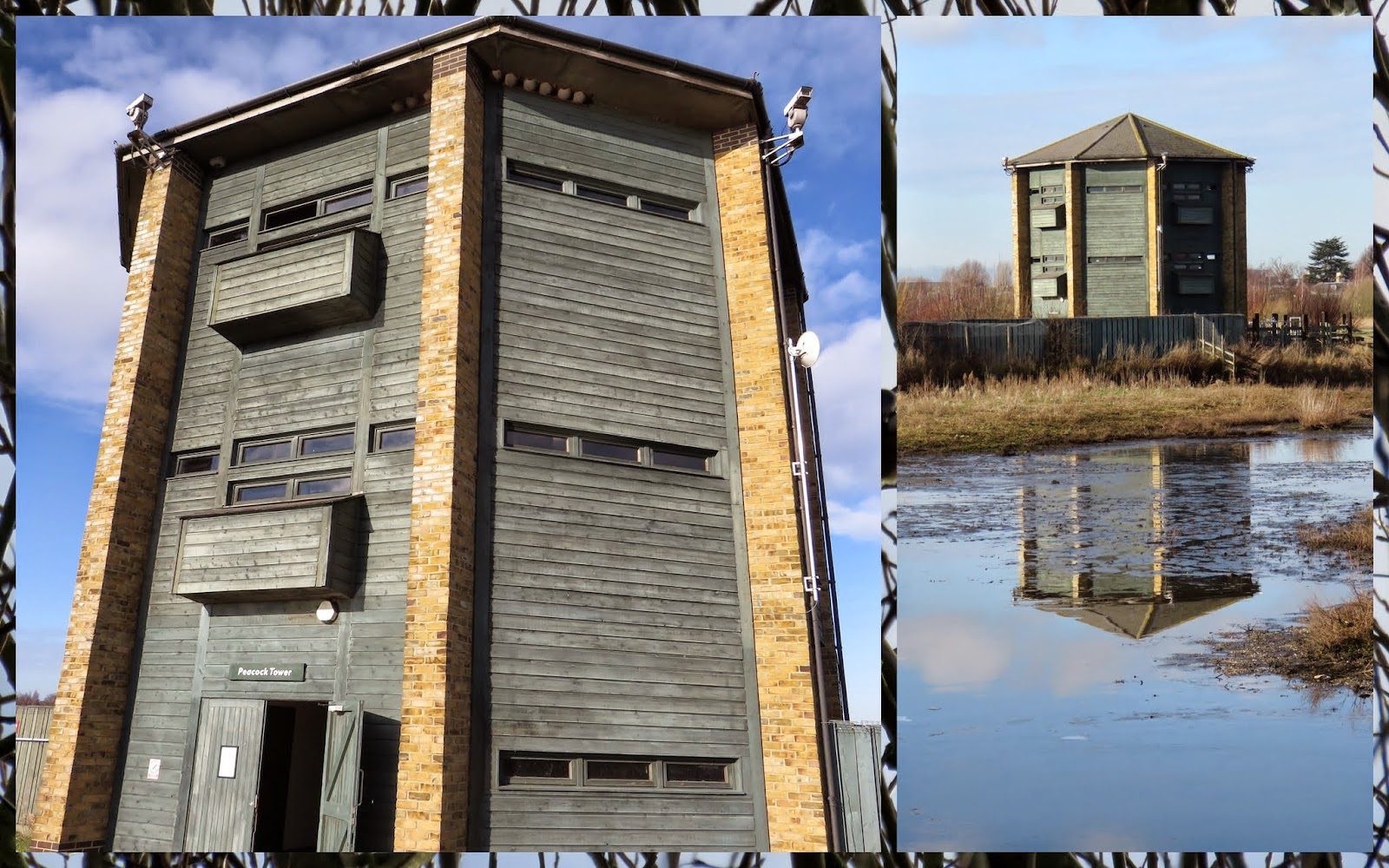 Bird Hide at the Wildfowl and Wetlands Trust in London