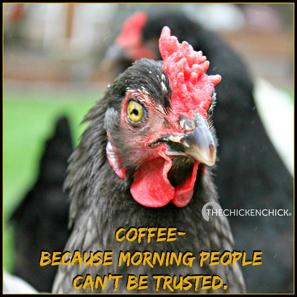 Coffee: Because morning people can't be trusted.