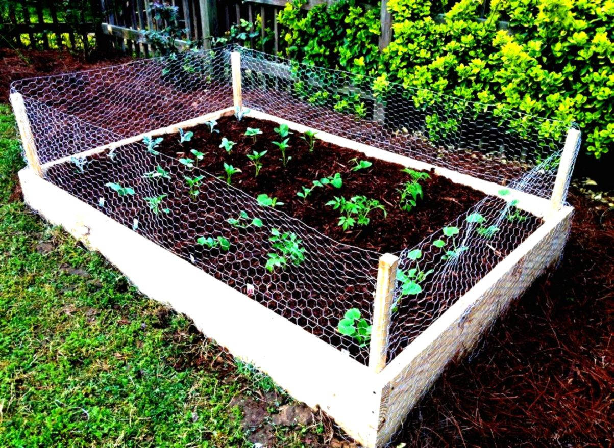 Diy vegetable garden fence wallpapers gallery for Diy vegetable garden