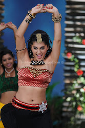 Tapasee Pannu Latest Hot Navel and Thigh Show