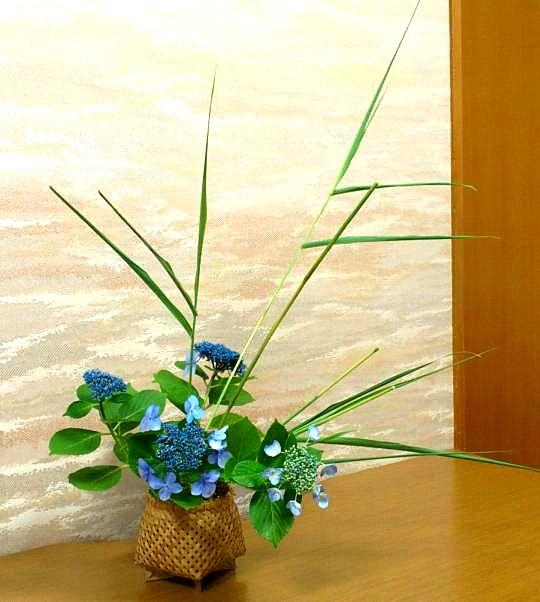 Ikebana sydney
