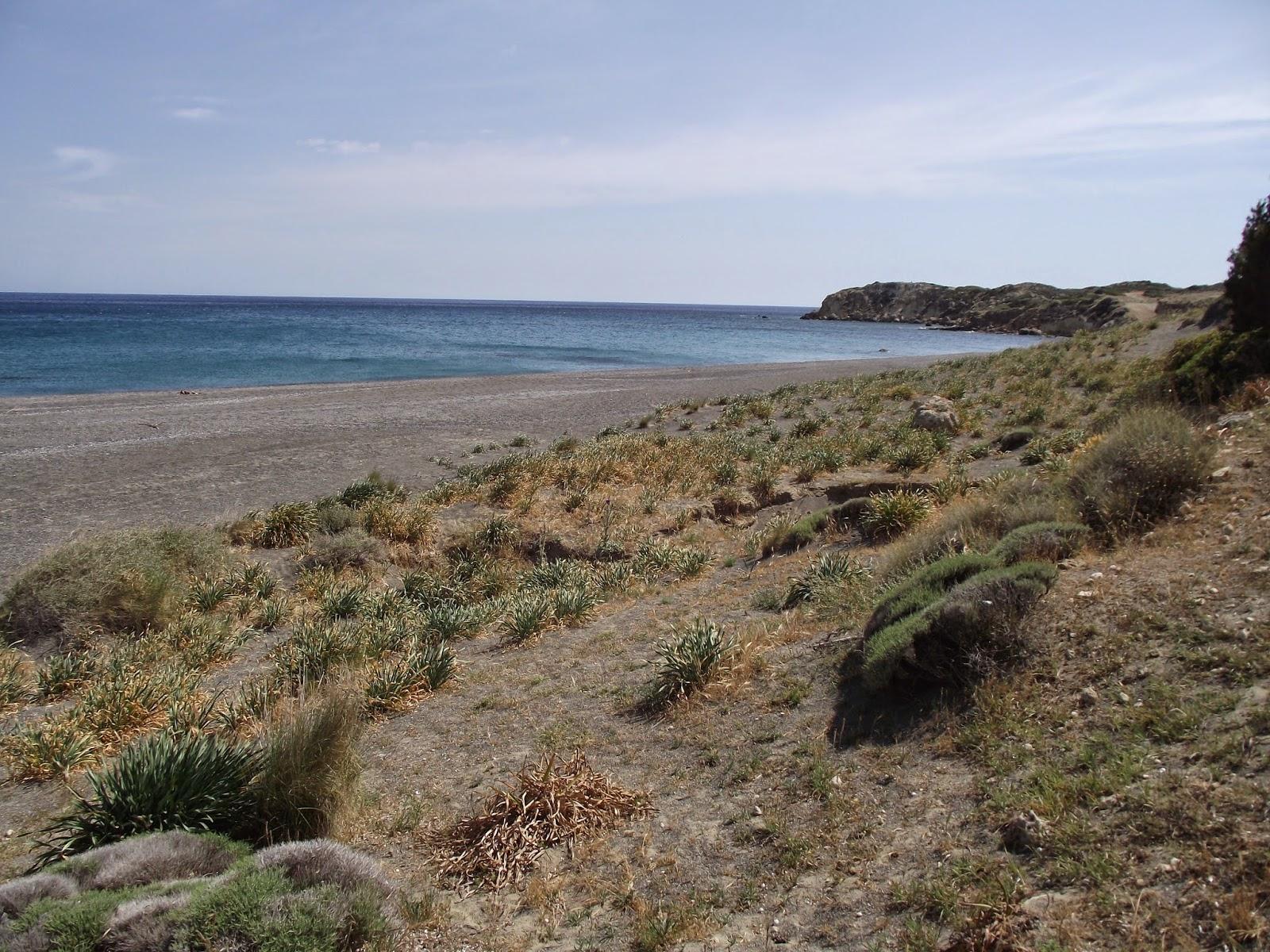 080514+Long+Beach+Dunes+015.JPG