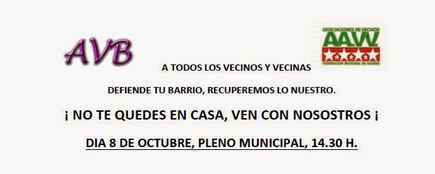 Asiste al Pleno de la Junta Municipal