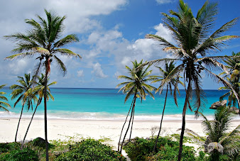 #16 Barbados Island Wallpaper