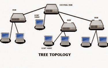Computer learning centre computer network tree network topology the highest most layer is known as core layer and is central point of the network ie root of the tree from which all nodes fork ccuart Images