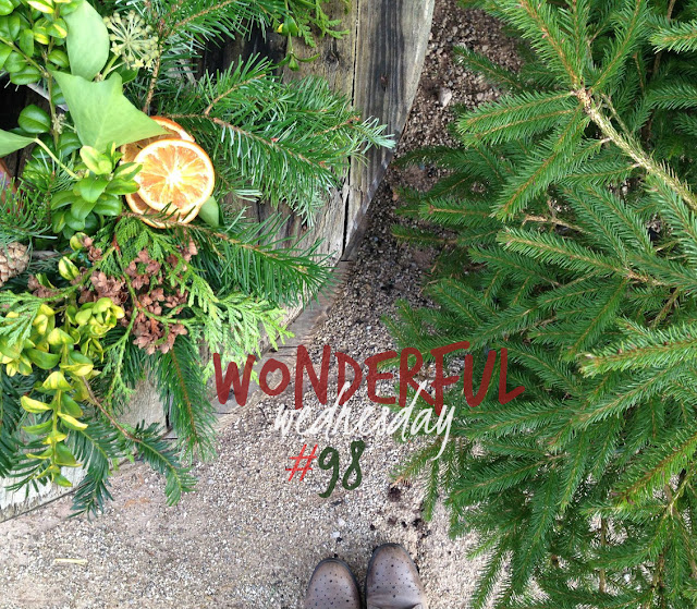 Wonderful Wednesday #98