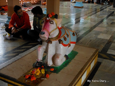 A Nandi Bull at the Tungareshwar temple in Vasai, Mumbai