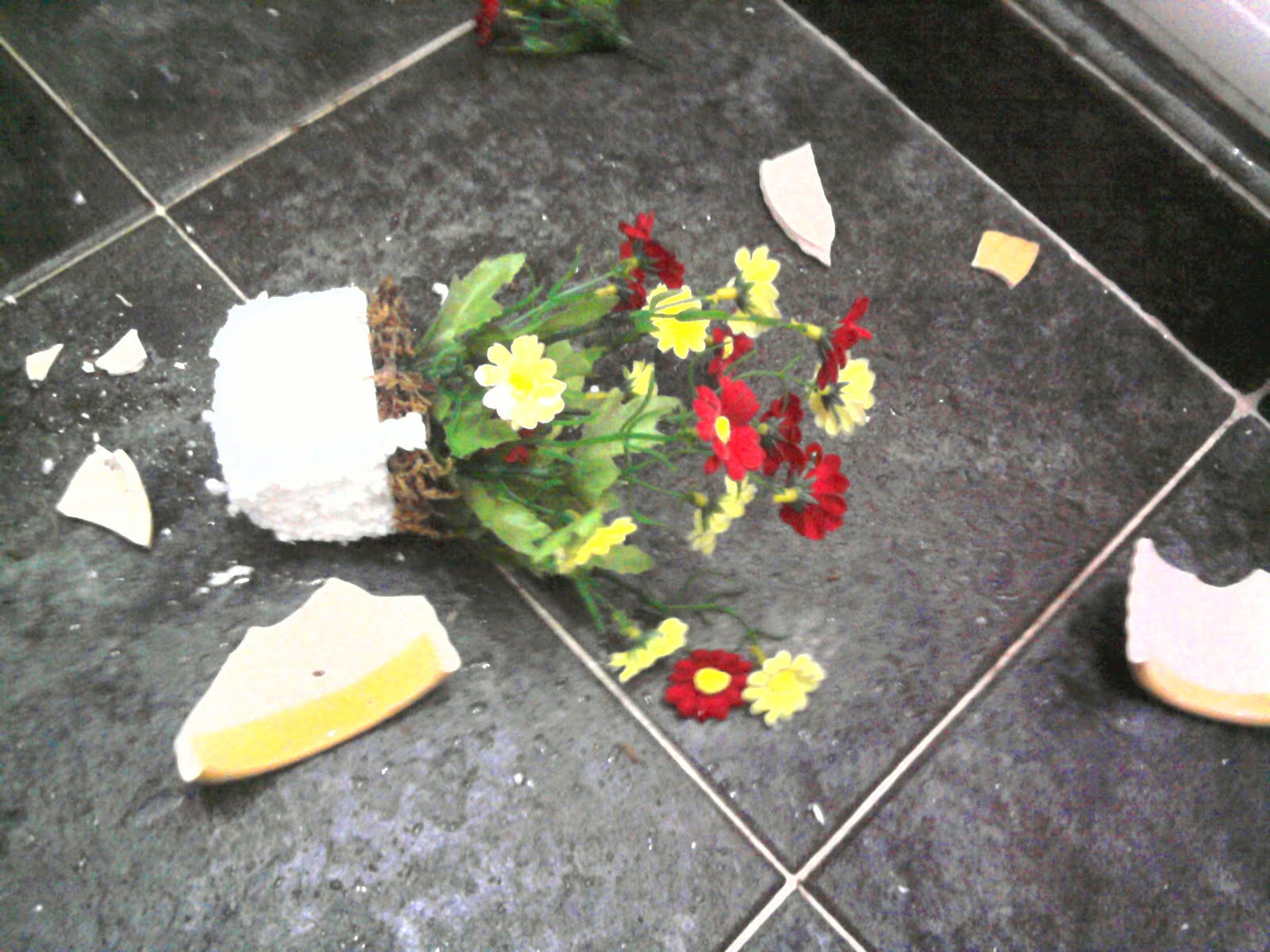 Kage: Broken Flower Pot, Mushrooms, Mango Kakigori, Broken ...
