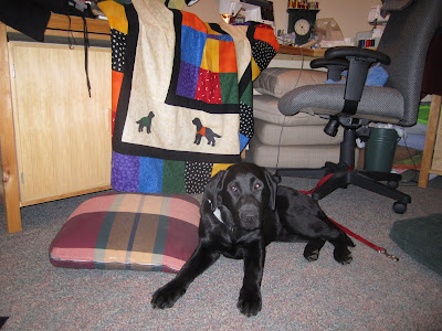 Black lab puppy is lying down on the floor in a still quite messy sewing room. There are small cushions on the floor on either side of Romero, and a desk chair behind him. The chair is empty, but positioned in front of a sewing machine. Romero's quilt is sitting at the machine as the final touches are being added to the front of the quilt. The quilt has a centre of brightly coloured squares, a black border, a thick cream border, another thin black border, and finally another row of black and coloured squares. The newest addition is several dog silhouettes in the cream area. The only ones that can be seen in this picture are a small black lab puppy in a green (foster puppy) jacket in the bottom left corner, and beside that a larger black lab in an orange (hearing ear) jacket.