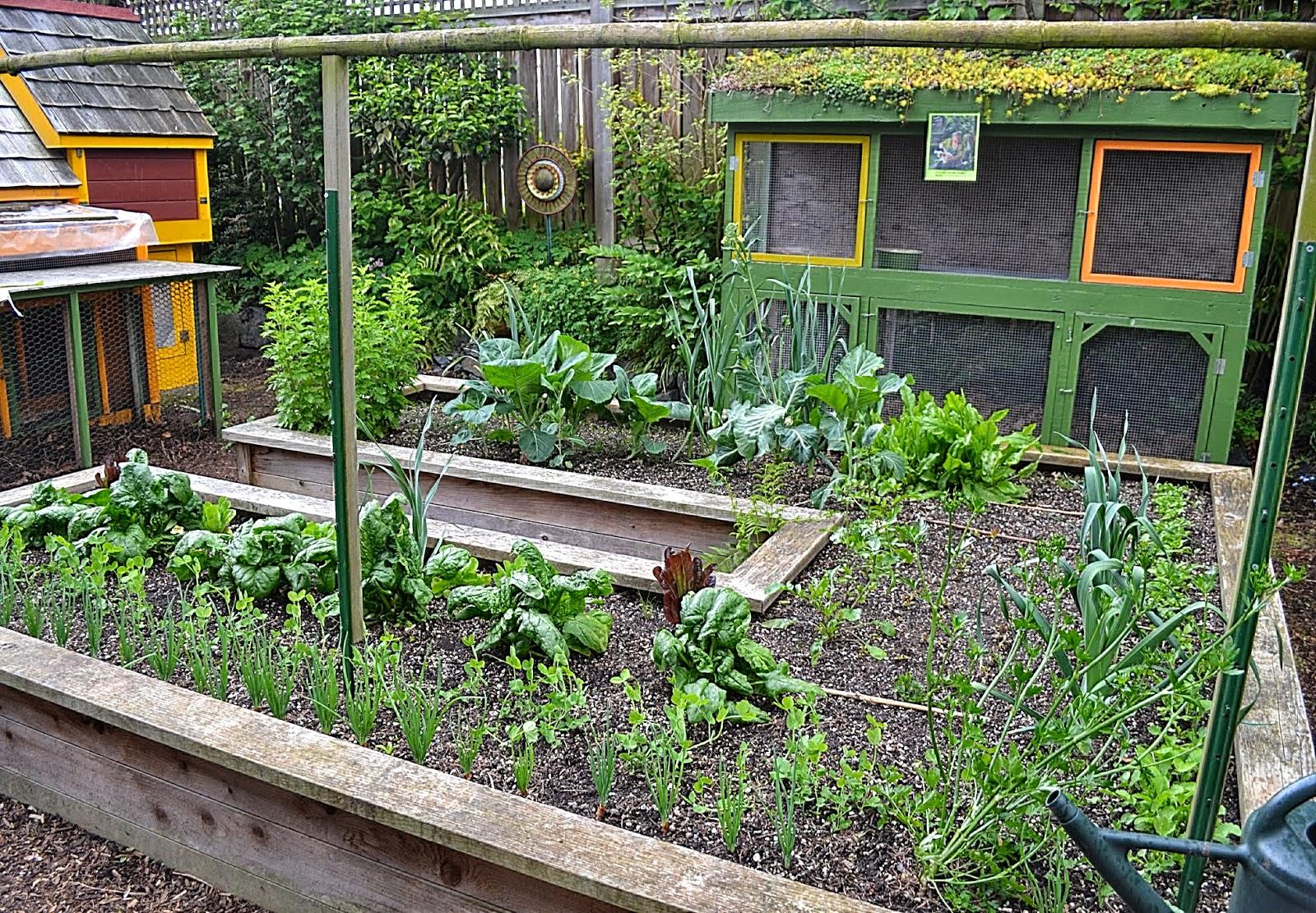 Kitchen Garden Fence The Outlaw Gardener The Garden Of Jennifer And Elroy Carlson