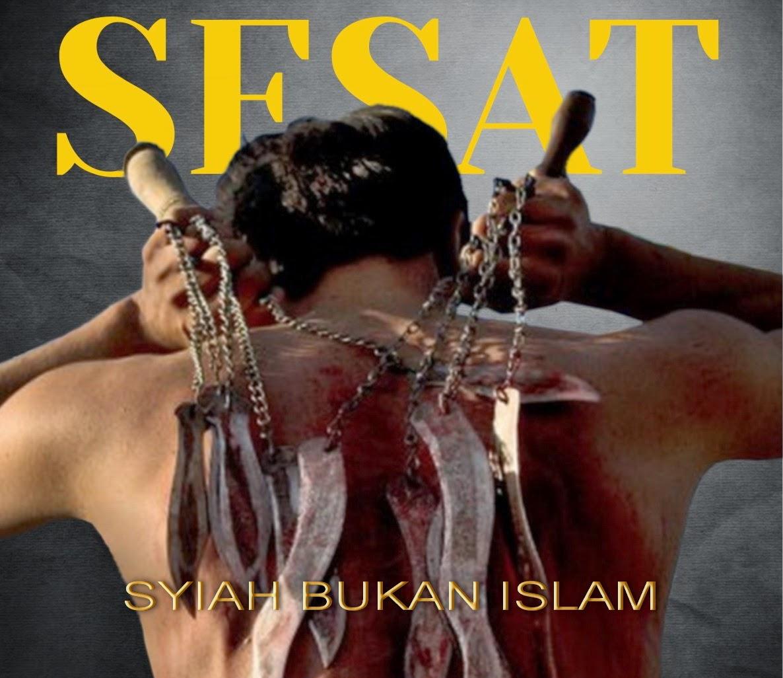 raja Aceh Sejak Kerajaan Perlak Sebuah buku berjudul  Syiah di Aceh Menandai Masuknya Islam ke Indonesia