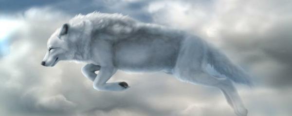 Чоно бол Монголчуудын сүлд хийморь.
