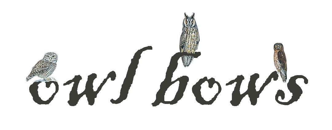 owl bows