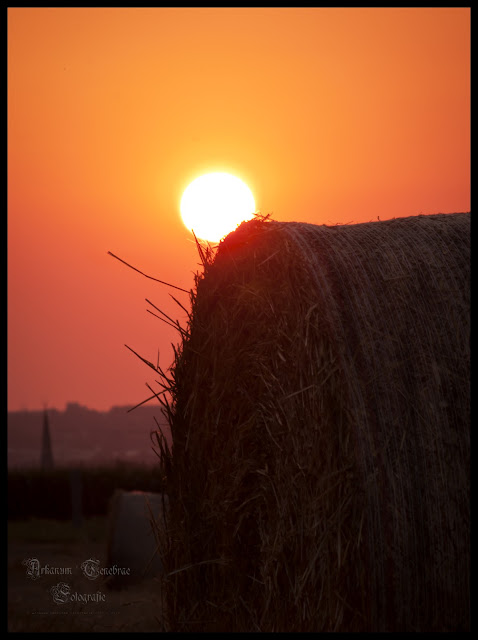 Ein Strohballen der auf einem Feld steht und im Hintergrund die Abendsonne zu sehen ist