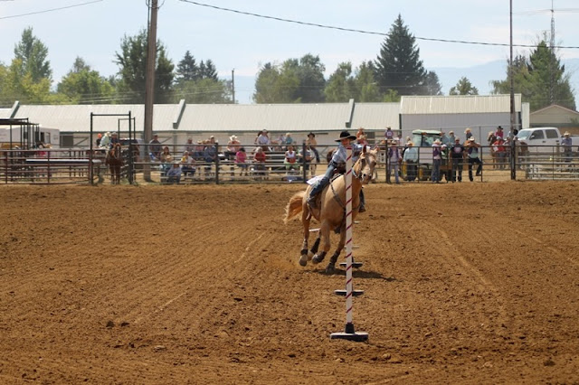 contestant running through the pole bending course at the Sheridan Elk's Youth Rodeo