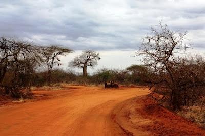 camino Kenia, africa, África
