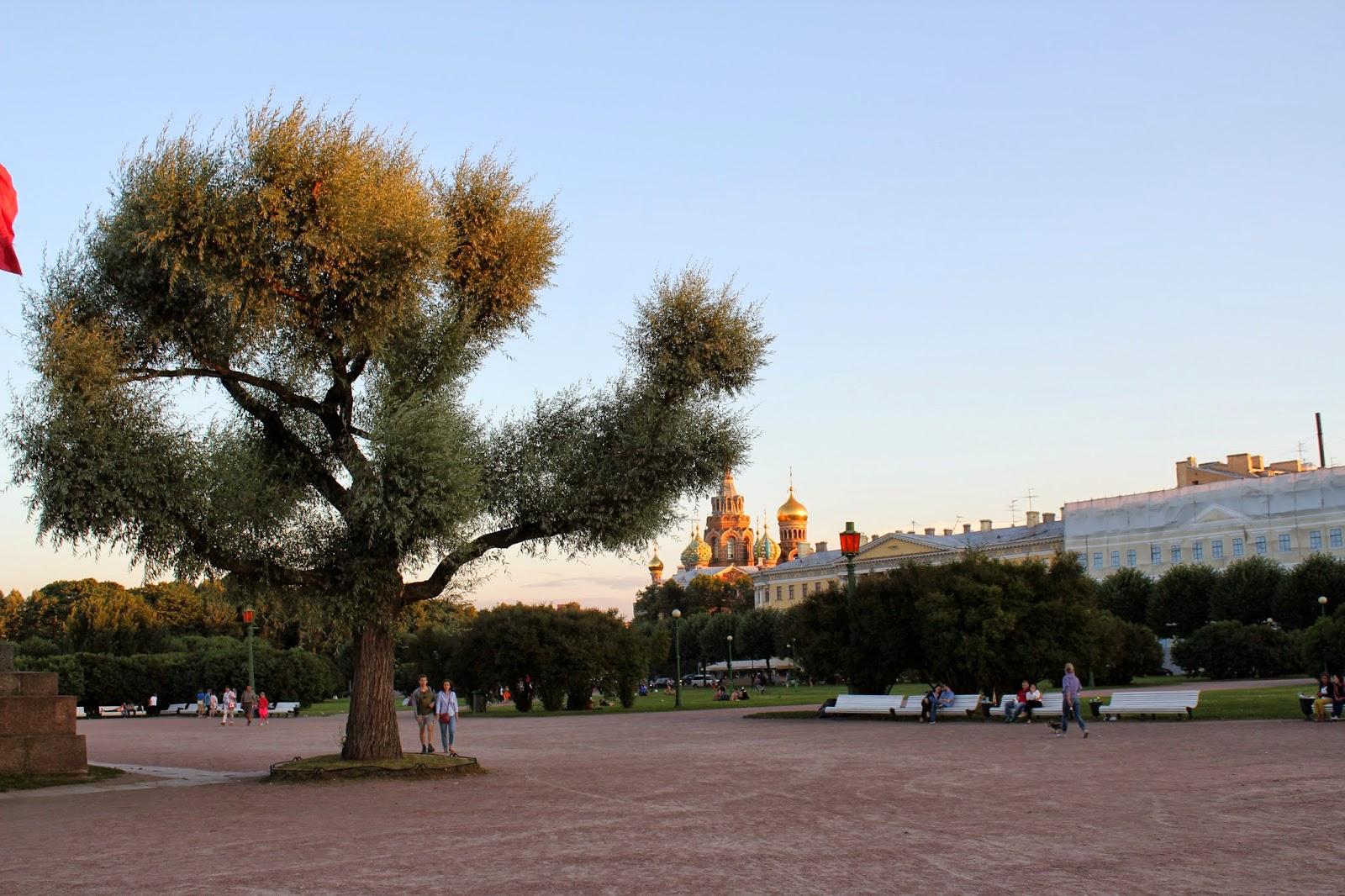 Петербург, марсово