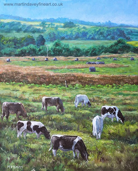 Cows in a field in the Devon countryside – oil painting M P Davey