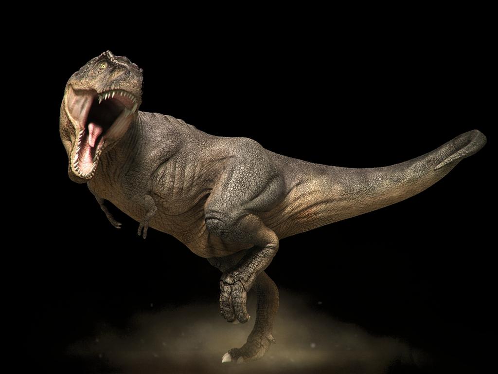 Tyrannosaurus Rex Wallpaper | PicsWallpaper.com