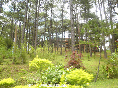 Travel Guide: The Manor at Camp John Hay