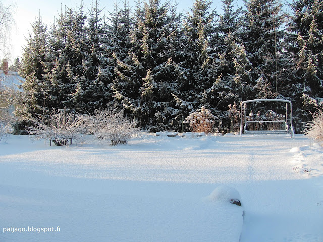talvi: hiljaisuus