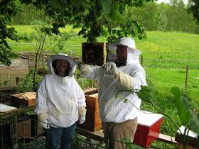 Imkerij De Honingpot op FACEBOOK