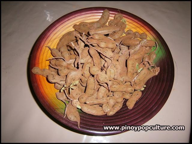 tamarind, sampalok, Tamarindus indica, singang