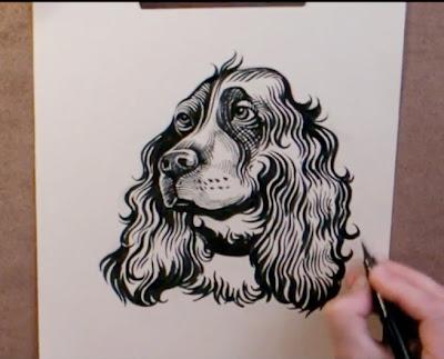 dessin d un chien epagneul au stylo pinceau