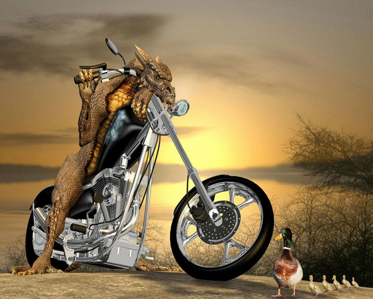funny 3d wallpaper is - photo #34