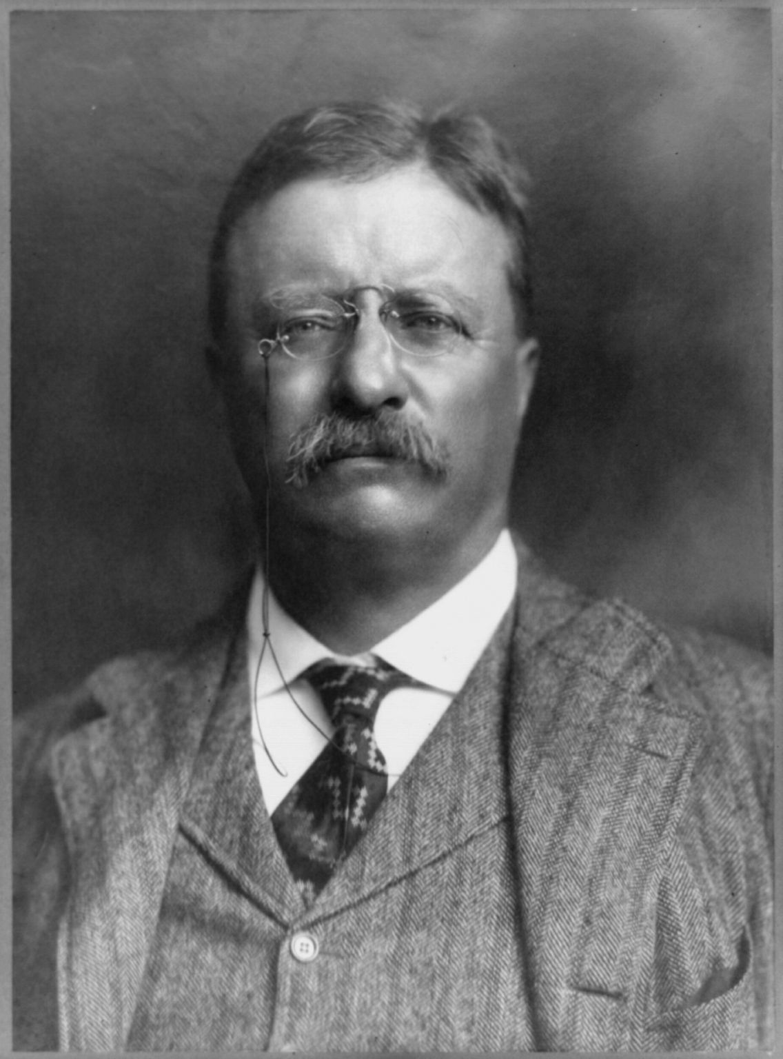 Serene Musings: 10 Fun Facts About Theodore Roosevelt Theodore Roosevelt