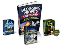 Backlink Snatcher 2 Bonus 6