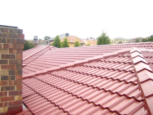 rhino roofing solutions rhino roofing solutions can