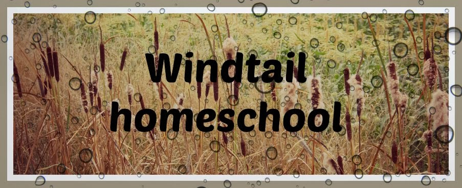 Windtail family homeschool
