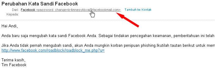 E-Mail Jebakan Pencuri Password Facebook