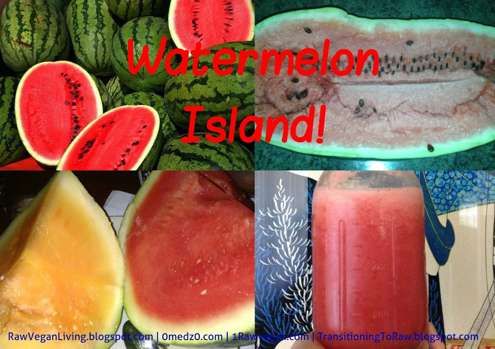 watermelon island collage