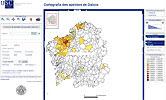 cartografía dos apelidos de Galicia