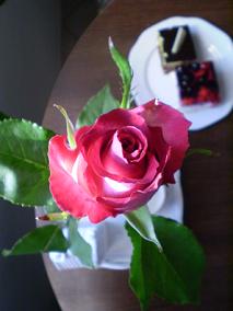 Růžička k MDŽ