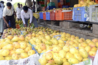 Delhi govt bans use of calcium carbide for ripening fruits