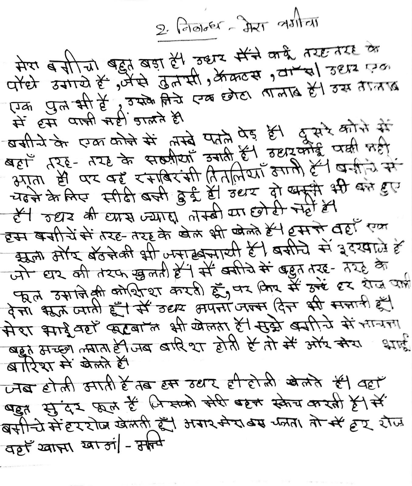 Fake essay writing zoo in hindi