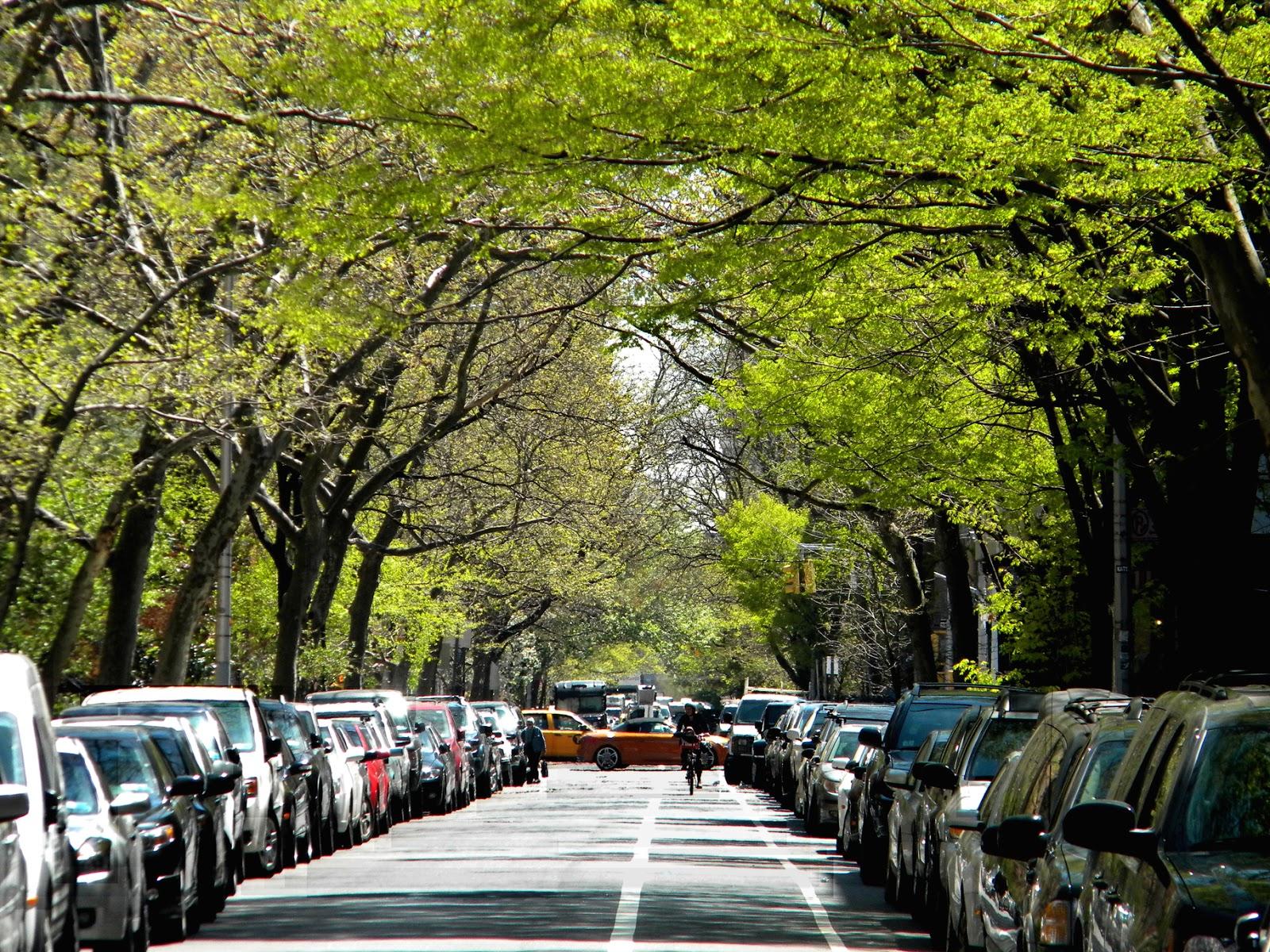 Chelsea Morning Manhattan