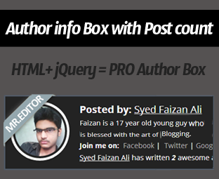 Author info Box For Blogger