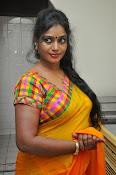Jayavani glam pics in saree-thumbnail-16
